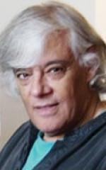 Тарик Анвар