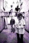 фото The Gits